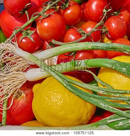 various organic fresh vegetables closeup colorful background