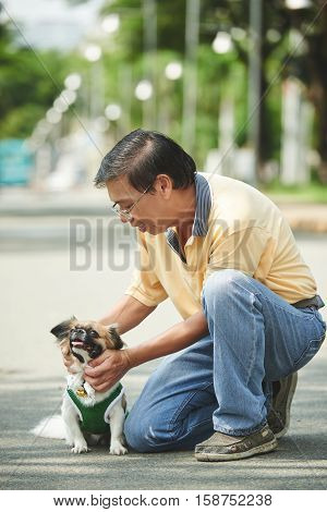Close-up image of man patting his cute little dog
