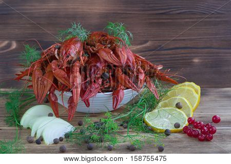 Red Boiled Crayfishes, Fennel, Onions, Lemon, Tomato On Wooden Background