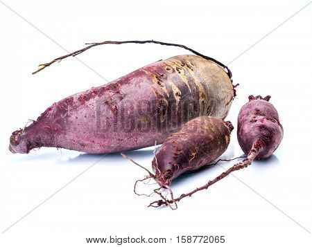 Three fresh organic beetroots shot on white