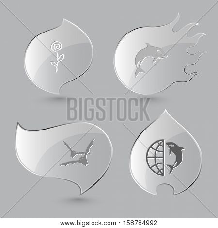 4 images: flower, killer whale, bats, globe and shamoo. Nature set. Glass buttons on gray background. Fire theme. Vector icons.