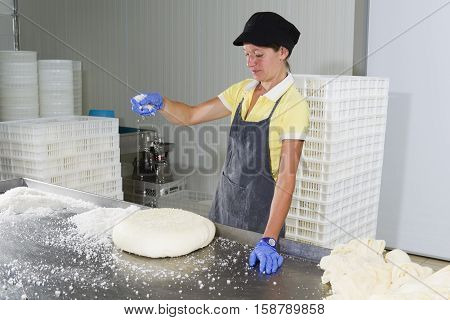 Woman is putting same salt on the pieces of cheese for the maturing