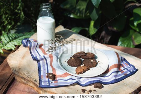 Cookies and milk in glass bottles, natural background