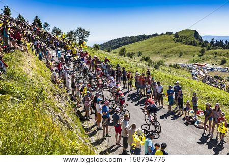Col du Grand ColombierFrance - July 17 2016: The peloton riding on the road to Col du Grand Colombier in Jura Mountains during the stage 15 of Tour de France 2016.