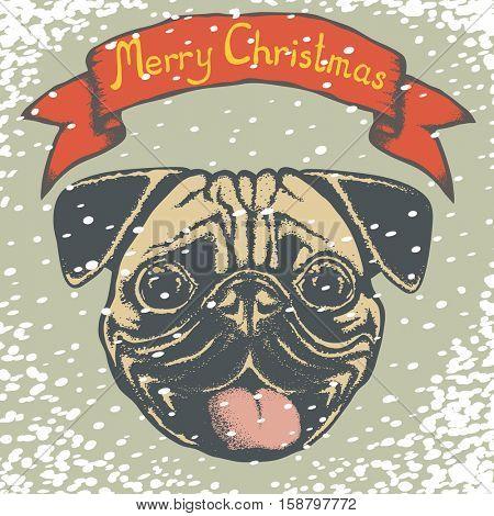 Pug dog vector illustration. Pug dog head isolated. Inscription Merry Christmas and snow