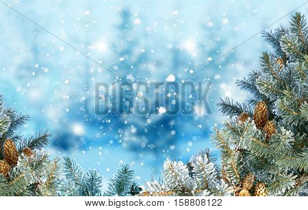 Winter Christmas background with fir tree branch Merry Christmas and happy New Year greeting card with copy-space.Christmas background.Winter landscape with snow and fir trees