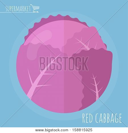 Flat design red cabbage vector icon template