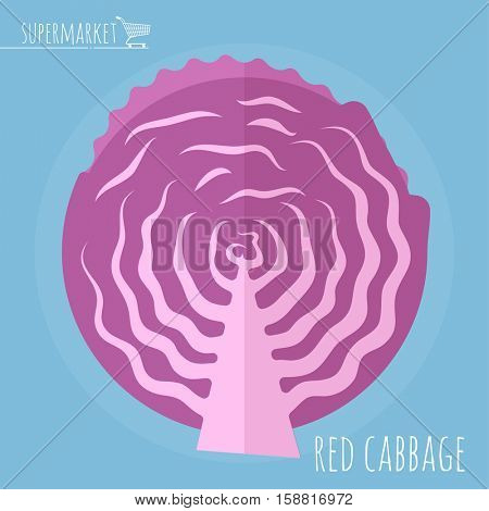 Flat design half red cabbage vector icon template