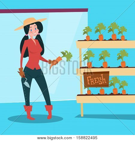 Farm Market Organic Eco Fruits Vegetables Grocery Flat Vector Illustration