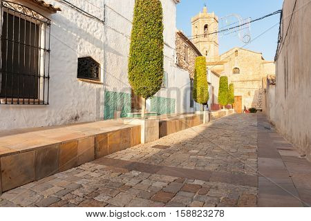 Sun streams in highlighting trimmed trees making long shadows in tidy residential narrow Spanish traditional village street