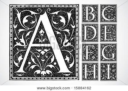 Vector Decorative Alphabet - a-i