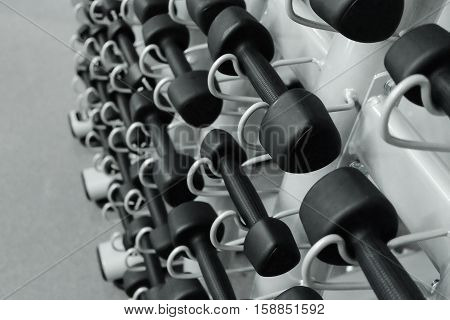 Dumbbells In Sports Club Or Gym And Fitness Room. Weight Training Equipment