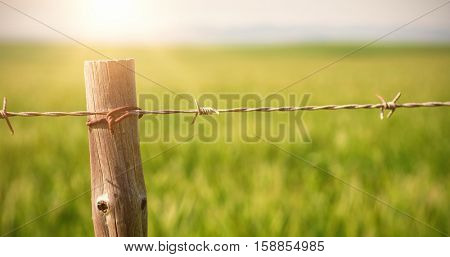 Close up of fence in field on sunny day