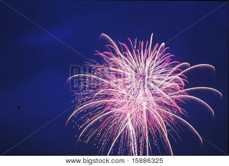 Midsummer Fireworks
