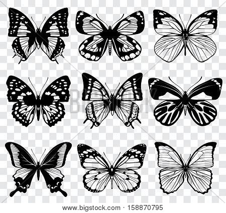 Vector butterflies isolated on transparent checkered background. Silhouette black butterflies, collection of vintage butterfly illustration