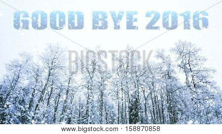 words good bye 2016 on winter background