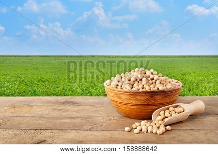 chickpeas grains in ceramic bowl. Chickpea in bowl on table with field of chickpeas on the background. Agriculture and harvest concept. Photo with copy space area for a text