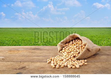 chickpea in sack. Chickpeas grains scattered out of the bag on table with green field on the background. Agriculture and harvest concept. Photo with copy space area for a text