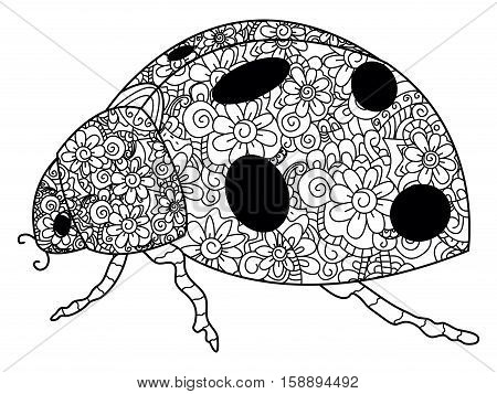 Coccinellidae coloring book for adults vector illustration. Anti-stress coloring for adult ladybird. Zentangle style insect. Black and white lines. Lace pattern animal