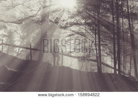 Hiker in a foggy forest  - Traveler with backpack staying in forest near a wooden fence enjoying the warm sun rays passing through fog