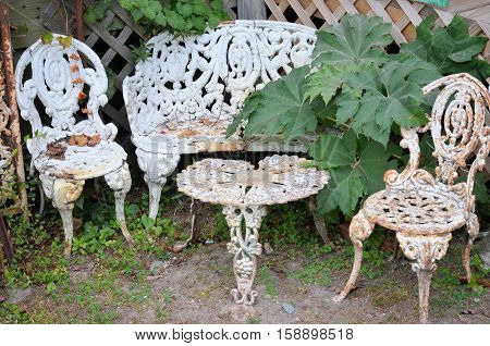 White painted wrought iron garden furniture with plants growing around the seats