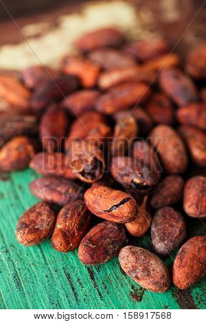 roasted cocoa chocolate beans on wood background macro