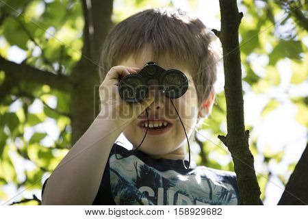 Boy on tree staring through binoculars into the camera. Little boy playing on leafy apple tree. Sunny weather and ceiling. Cute white boy standing in tree and laughs and spends leisure time activities