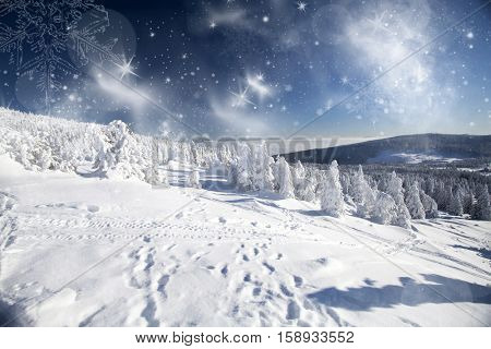 Trees covered with hoarfrost and snow in winter mountains - Magic Christmas snowy background