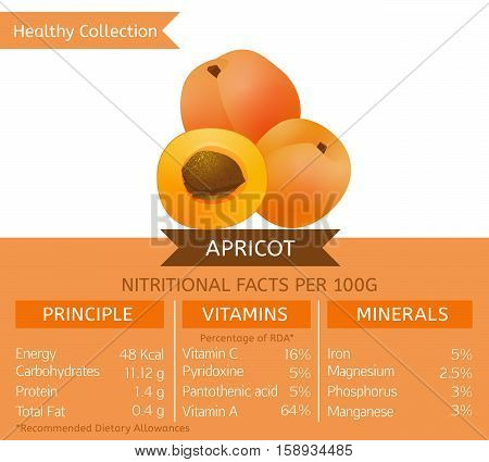 Apricot health benefits.Vector illustration with useful nutritional facts. Essential vitamins and minerals in healthy food. Medical, healthcare and dietory concept.