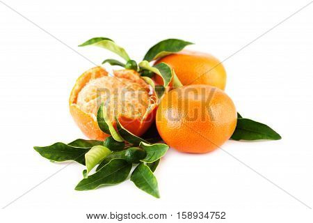 Mandarin or Tangerine Fruit on White Background. Mandarins with Green Leaves Isolated with Shadow