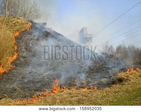 Set fire to dry grass. In the foreground a bright orange flame that quickly spreads through the dry grass.