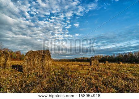 Hay bales in rural Prince Edward Island, Canada.