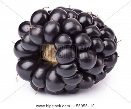 Ripe lying blackberry isolated on white background with clipping path