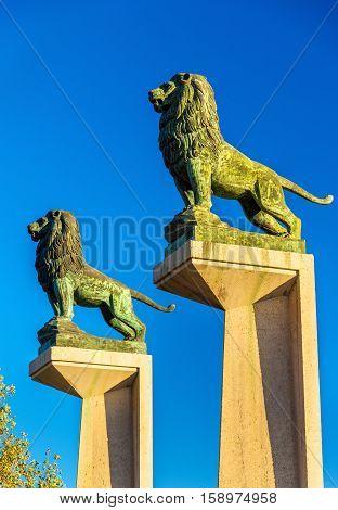 Lion statues at the Stone Bridge in Zaragoza - Spain