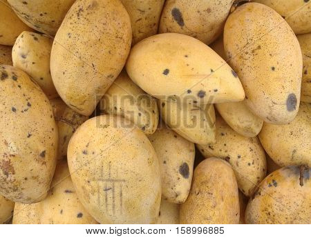 A Pile Of Rotten Yellow Mango, Healthy And Food Concept