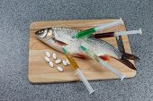 Raw fish not cooked. Fish on a cutting Board riddled with syringes of drugs. Symbolizes the contamination of food unnatural food. poster