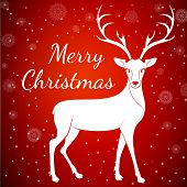 Merry Christmas reindeer on snowflakes dots background.Graceful noble animal reindeer on red soft glow surrounding, xmas wish postcard.Merry Xmas reindeer - white reindeer with antlers poster