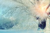 Winter landscape with frosty winter tree in the sunrise beams. Winter wonderland picturesque scene in early winter morning with winter soft sunshine- winter forest in the sunrise. Winter landscape poster