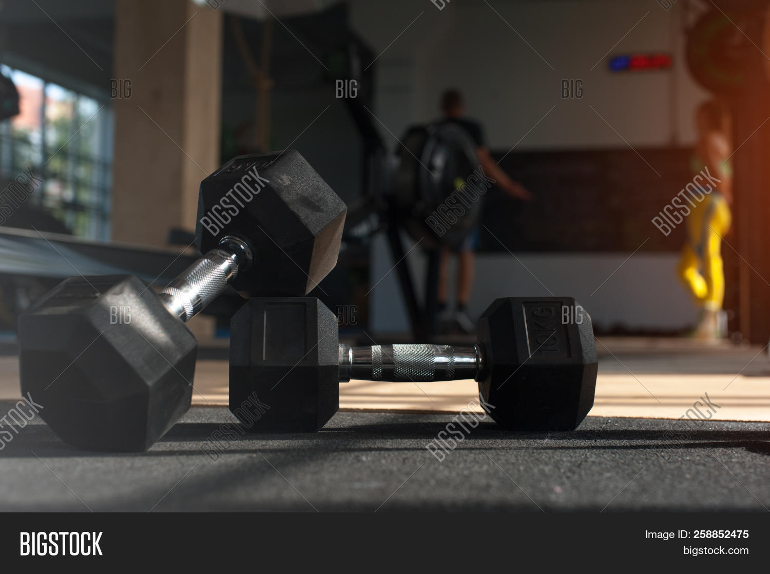 Workout Dumbbells  Image & Photo (Free Trial)   Bigstock