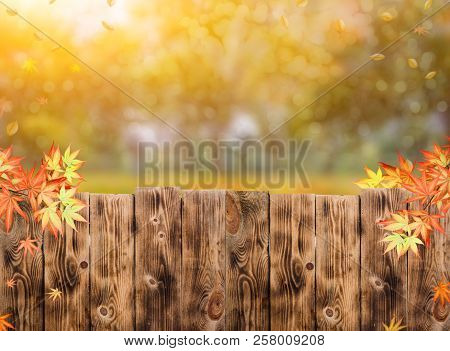 Wooden Fence In The Garden With Fall Background In Autumn Season