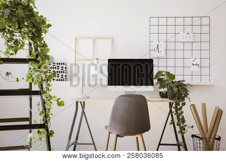 Real Photo Of White Apartment Interior With Fresh Plants, Paper Rolls In Basket, Organizer On Wall A