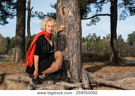 Pretty Blond Hair Woman Sitting On The Big Roots Of Pine Tree In Coniferous Autumn Park. Young Smili