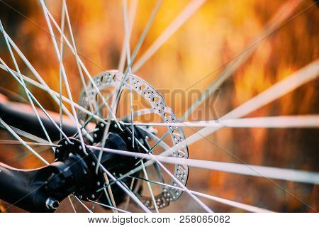 Close Up Bicycle Wheel. Spokes Details. Close Up