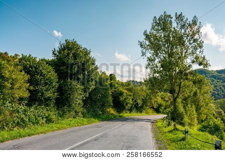 Countryside Road Through Forest In Mountains. Lovely Transportation Scenery In Early Autumn Afternoo