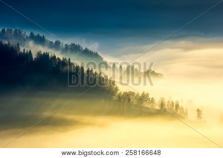 Deep Fog Above The Valley At Sunrise. Beautiful Autumn Background In Mountains. Lovely Nature Abstra