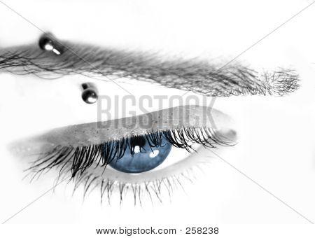 Blue Eye & Pierce