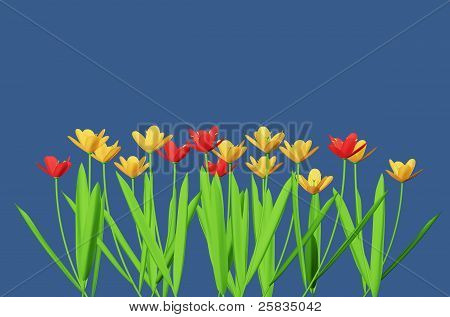 Red And Yellow Flowers Isolated In Blue