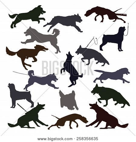 Dog Silhouettes On White Background. Set Of Canine Silhouettes Doing Different Activities. Dog Jumpi