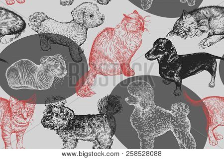 Cute Puppies And Kittens Seamless Pattern. Home Pets Background. Sketch. Vector Illustration Art. Re