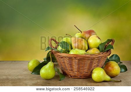 Ripe Pears In A Basket On A Wooden Table. Harvest Of Pear Tree Fruit. Space For Text.